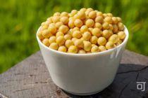 可以帮助长高的食物—黄豆长高食谱