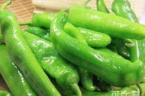 吃什么增高?青椒的增高食谱