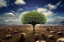 氢氧化钡环境影响
